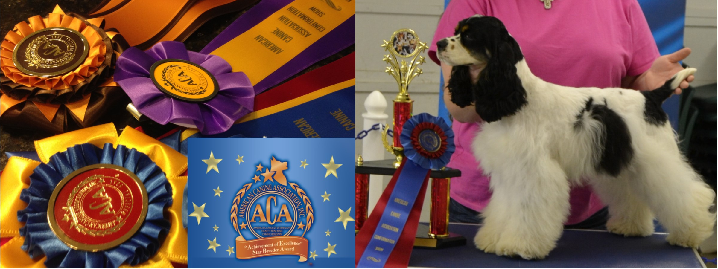 Pennsylvania Dog Shows Scheduled for March 23rd, 2016
